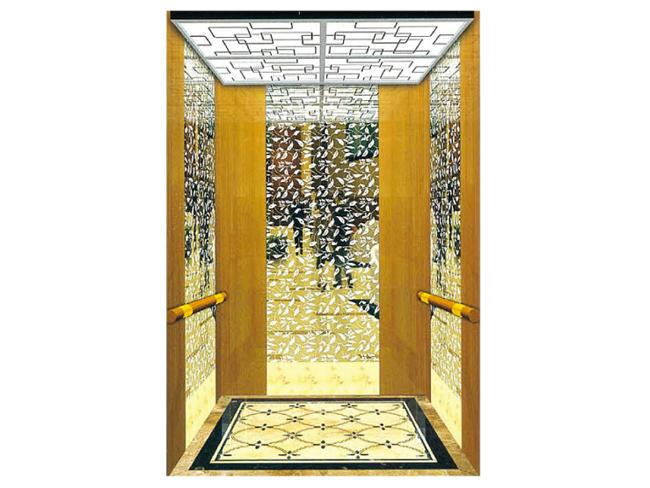 PASSENGER ELEVATOR CARBIN-2 Image